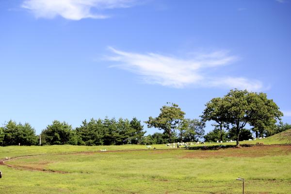 2011_09_06_公園