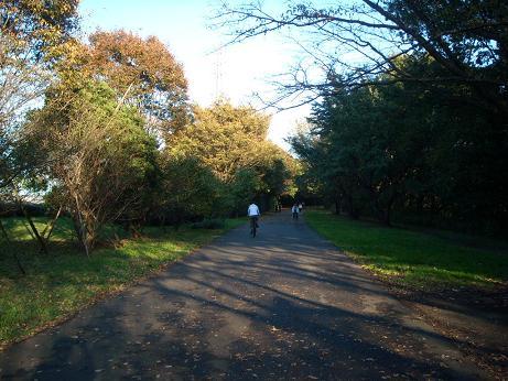 小山が丘 公園11月3日