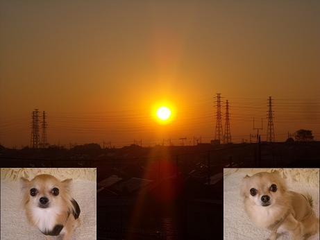 12月2日太陽-2