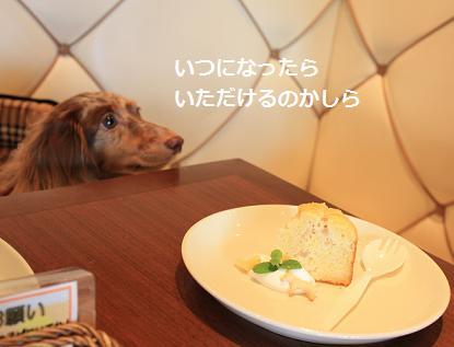 20Sep2010_nagoya3.jpg