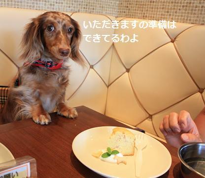 20Sep2010_nagoya6.jpg