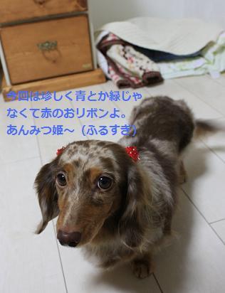 choco5Mar20114.jpg