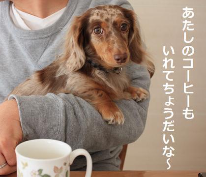 コーヒー下さいなぁ~
