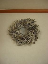 白妙菊のリース3