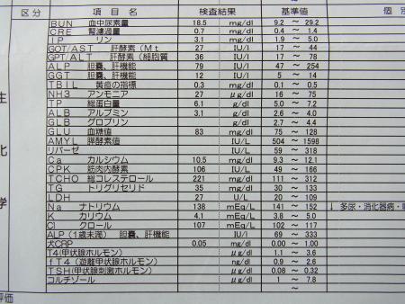 1005-211.jpg