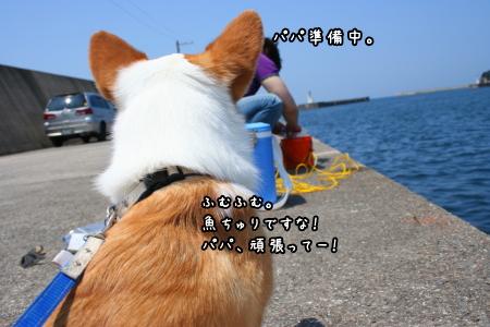 1006-17.jpg