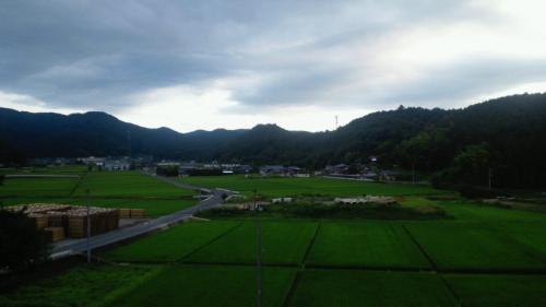 そこから見える風景(早朝)