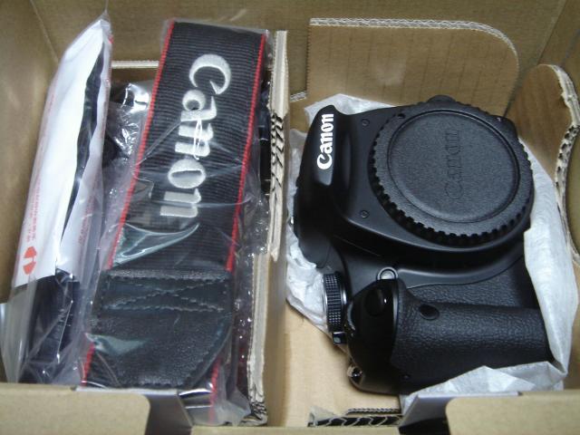 DSC08927_convert_20090926183355.jpg