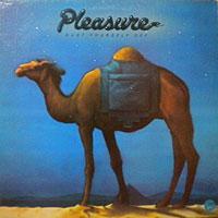 Pleasureブログ
