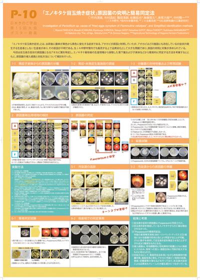 20110901_15kinoko_enokimedama