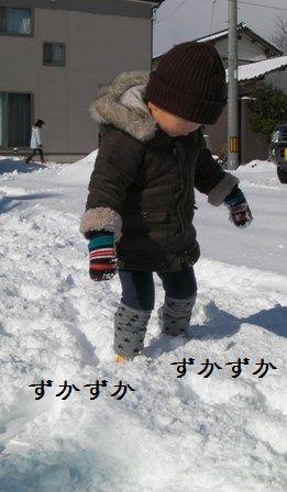 20110116_7.jpg