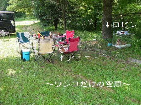20110717_10.jpg