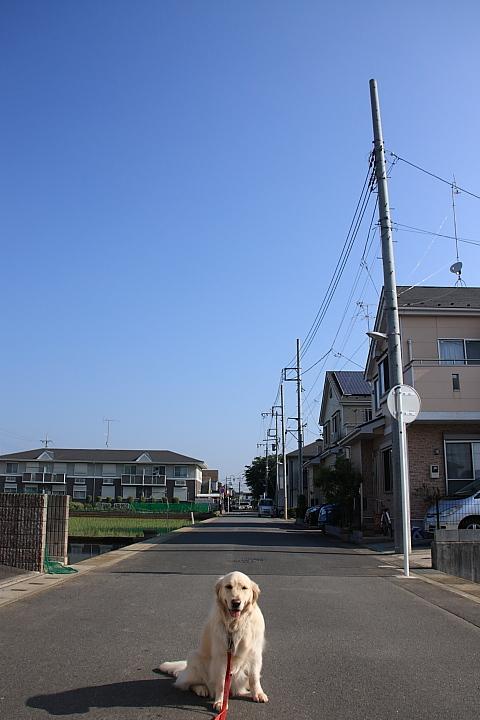 IMG_6630.jpg