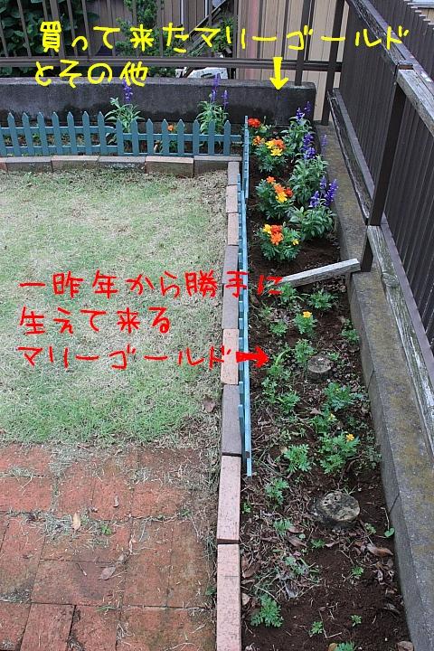 IMG_6723-2.jpg