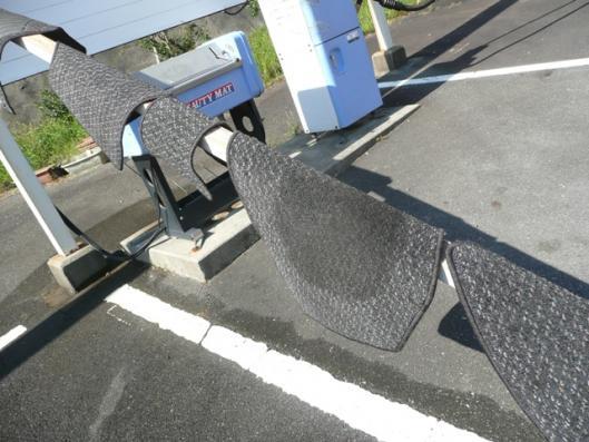 GNP!初洗車 (4)