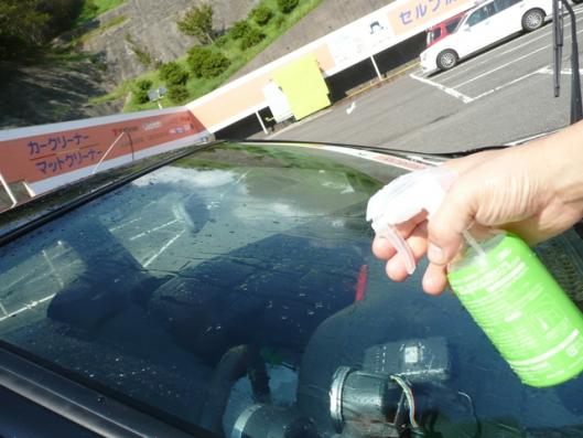 GNP!初洗車 (17)