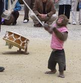 香嵐渓ブログ用お猿