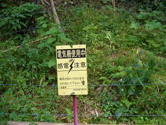 王滝渓谷3