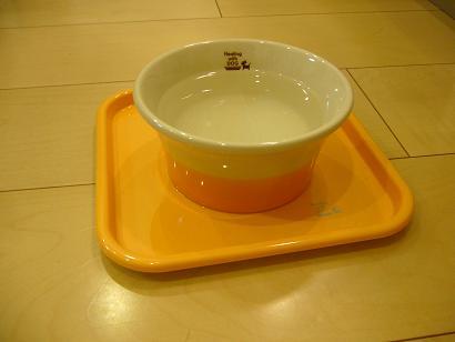 水飲みボウル
