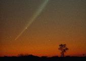 comet-swarm-bombs-sun_31316_170.jpg
