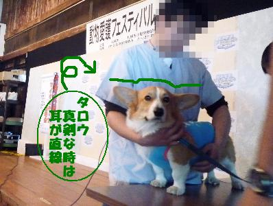 dc092127(修整1)(1)(1)
