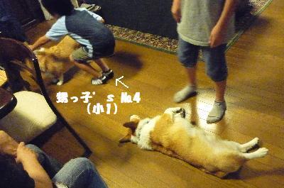 dc082735(1)(1).jpg