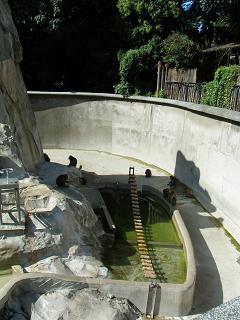 2008_0920takotako0062.jpg