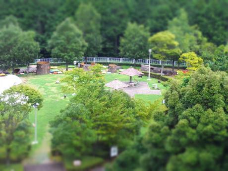 総合公園1