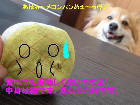 P5080162.jpg