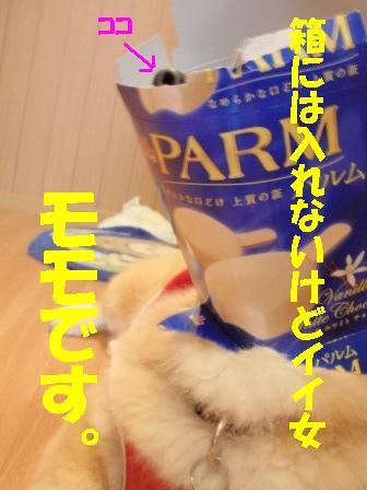 P6190289.jpg