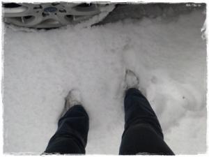 雪1101
