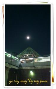 満月の夜1108