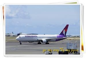 Hawaian.jpg