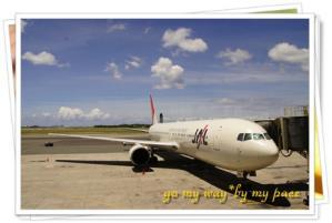 JAL083.jpg