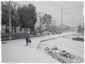 snow101231.jpg