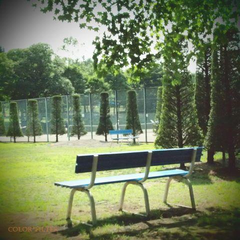 ある日のベンチ