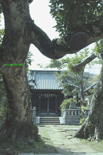 とある鎌倉01