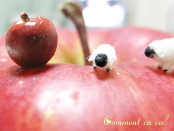 りんご羊2