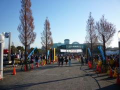 東浦マラソン