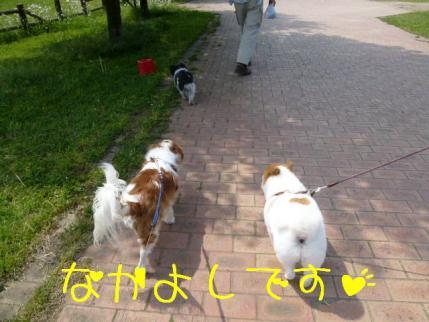 仲良しです!!