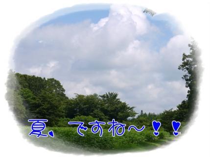 夏、ですね~!!