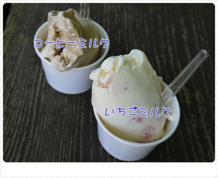 おいしいアイス!!