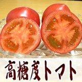 『高糖度トマト』アメーラ1kg【送料無料】