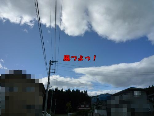 P1030015.jpg