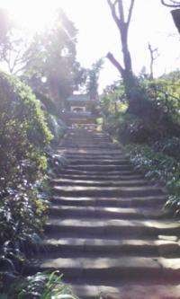 鎌倉100126_浄智寺