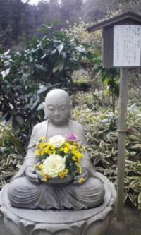 鎌倉100126_明月院5