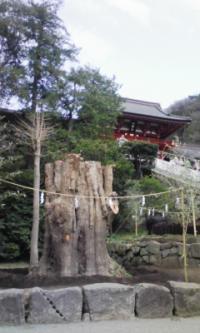 鎌倉_100323_6