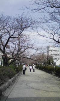 鎌倉_100323_2