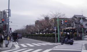 鎌倉_100323_9