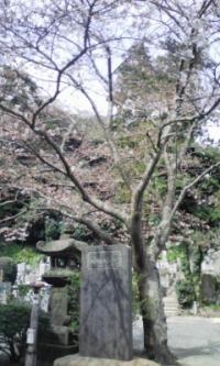 鎌倉_100323_14
